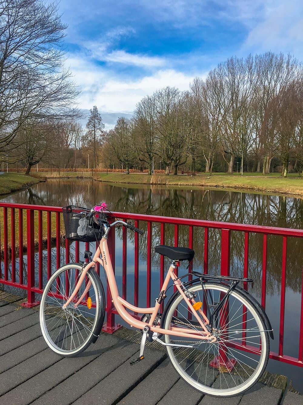 Beatrixpark amsterdam